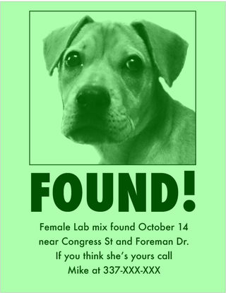 Dog-Found-Flyer